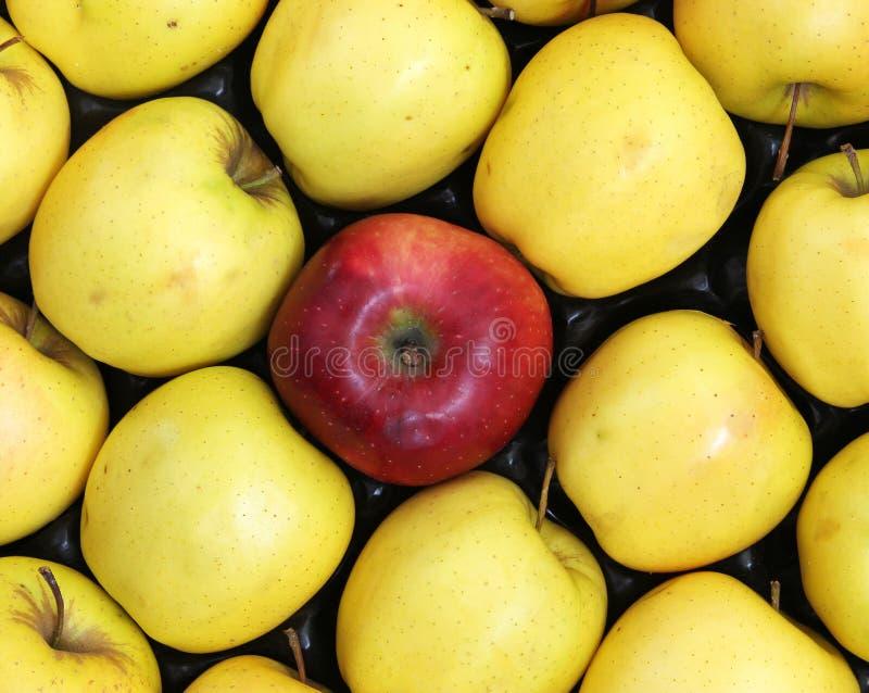 Roter Apfel mit gelben Äpfeln stockbilder