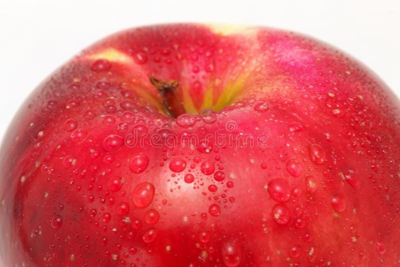 Roter Apple stockfoto