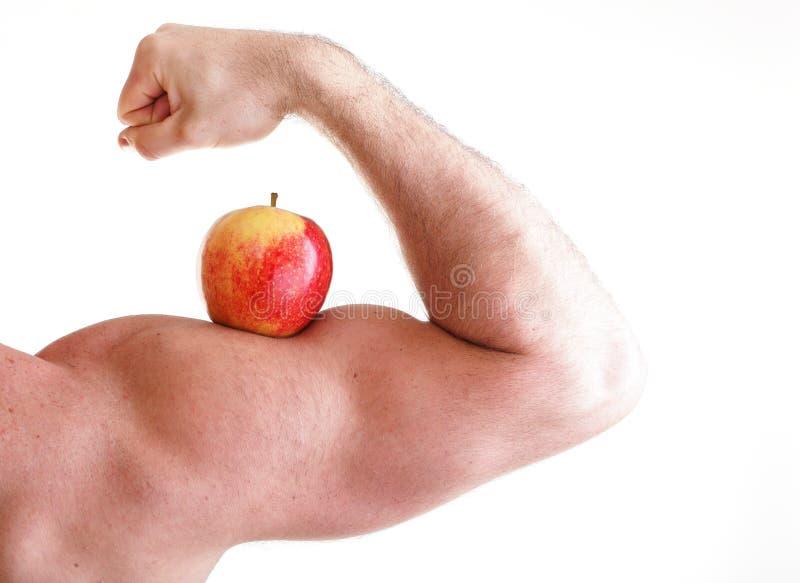 Roter Apple auf Bicep des Mannes Muskel lizenzfreies stockbild
