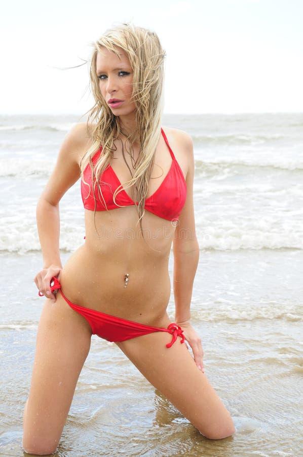 Roter Bikini stockbilder