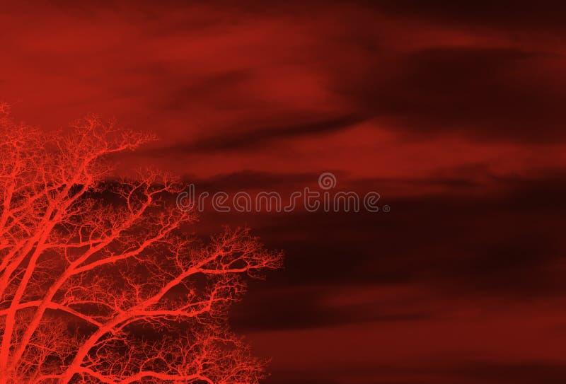 Roter Blumenhintergrund lizenzfreie abbildung