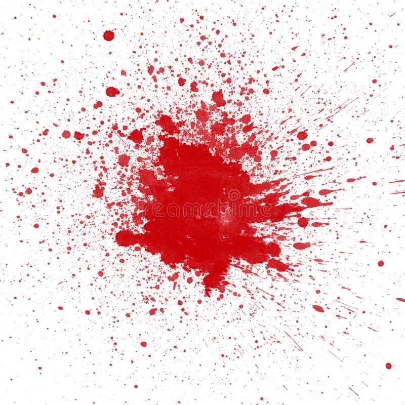 Roter Blutfleck auf weißem Hintergrund vektor abbildung