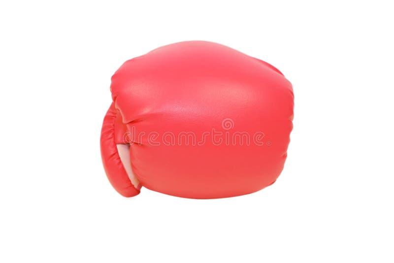 Roter Boxhandschuh im weißen Hintergrund stockfotografie