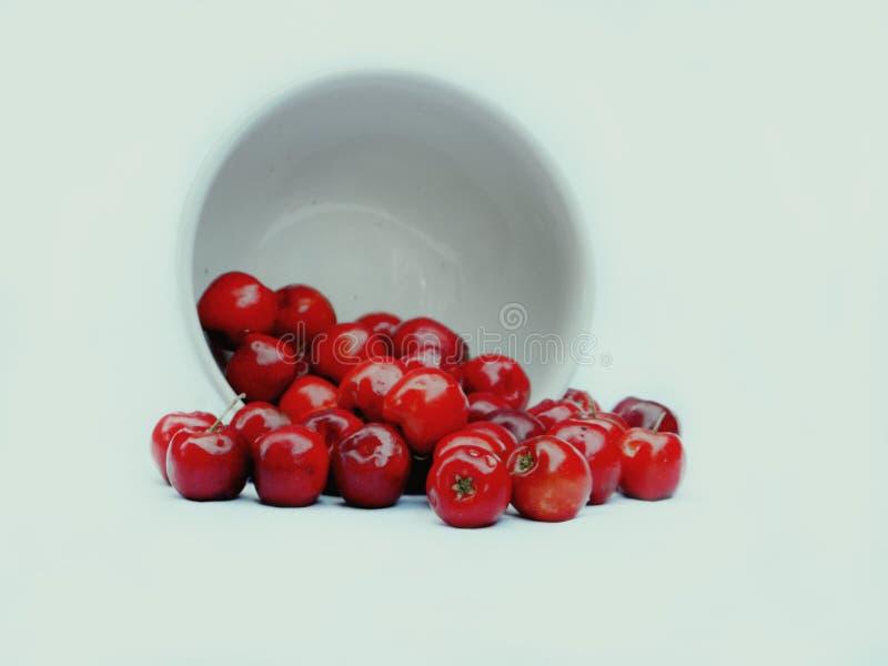 Roter Cherry Overturned stockbilder