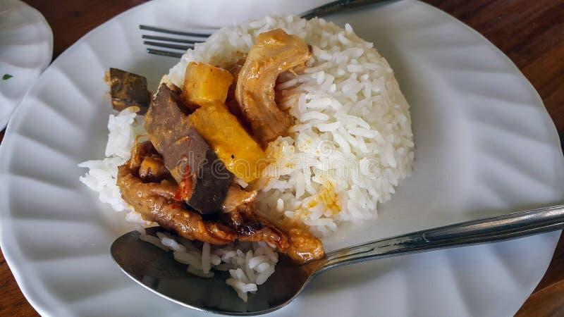 Roter Curry auf Reis stockbilder