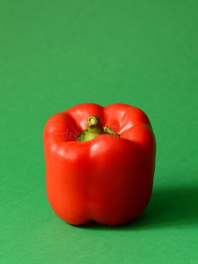 Roter Grüner Pfeffer lizenzfreie stockfotografie
