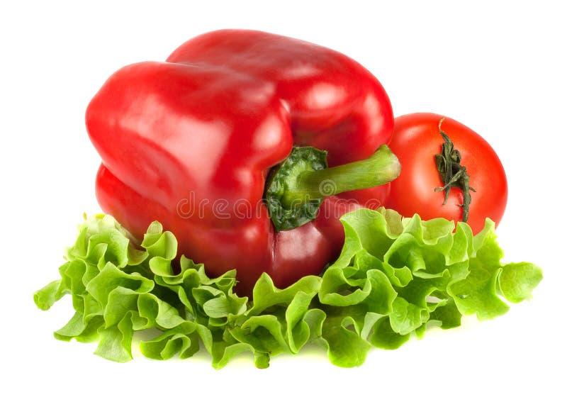 Roter grüner Pfeffer und Tomate auf lattuce über weißem Hintergrund stockfotografie