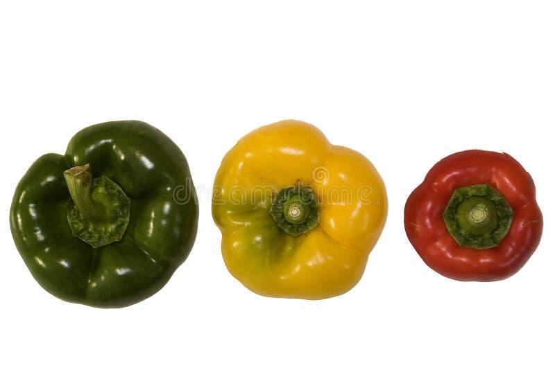 Roter, grüner und gelber Pfeffer auf Weiß stockbilder
