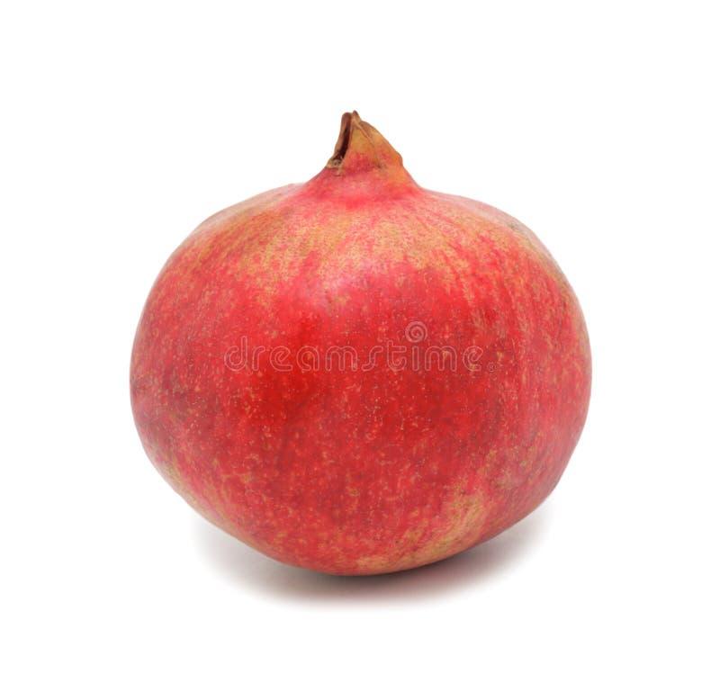 Roter Granatapfel, getrennt lizenzfreie stockfotografie