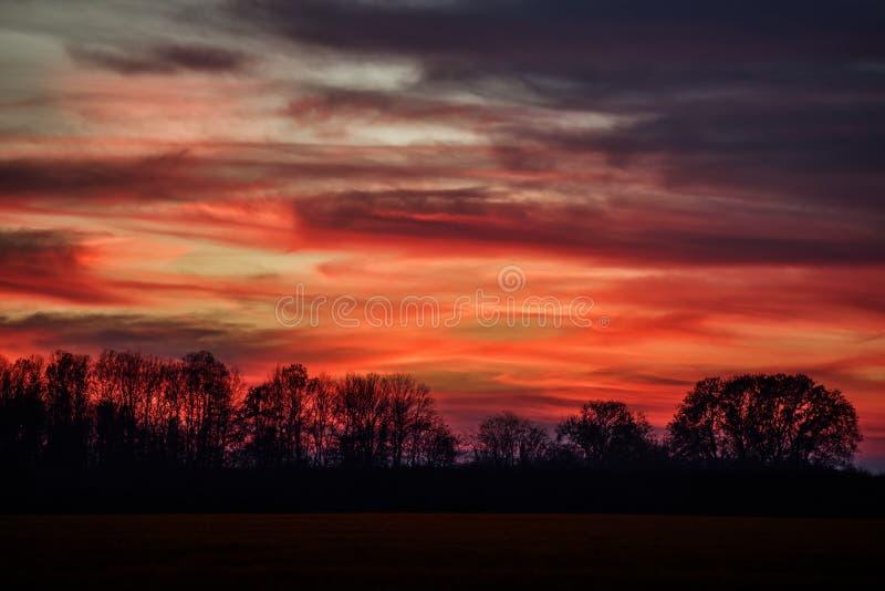 Roter Himmelfall des Sonnenuntergangwaldschattenbildes lizenzfreies stockbild