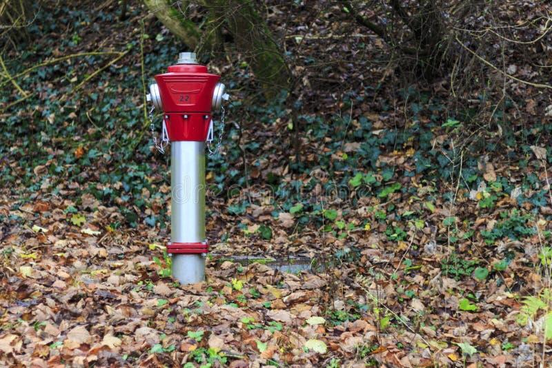 Roter Hydrant stockbild