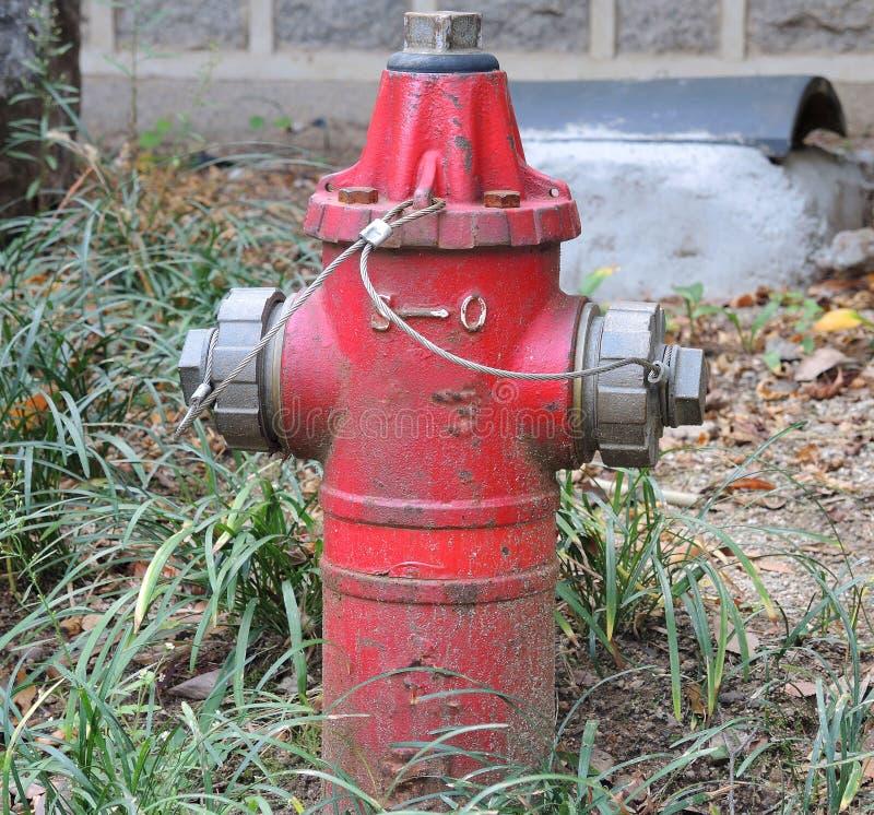 Roter Hydrant stockfoto