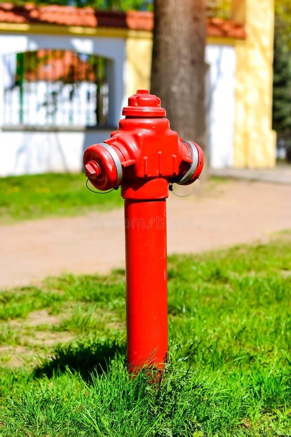 Roter Hydrant auf grüner Lichtung, Bialystok, Polen stockfoto