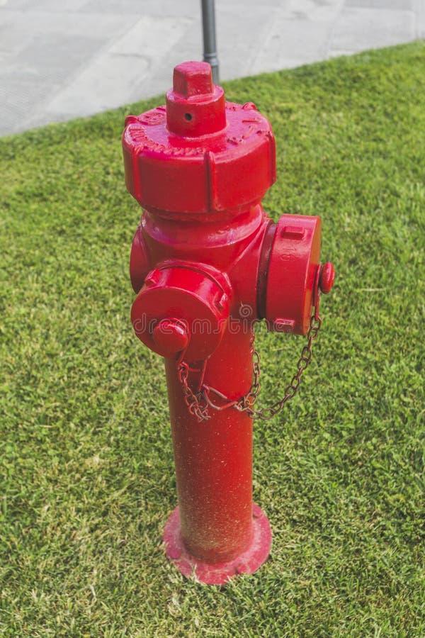 Roter Hydrant auf Gras lizenzfreie stockfotografie