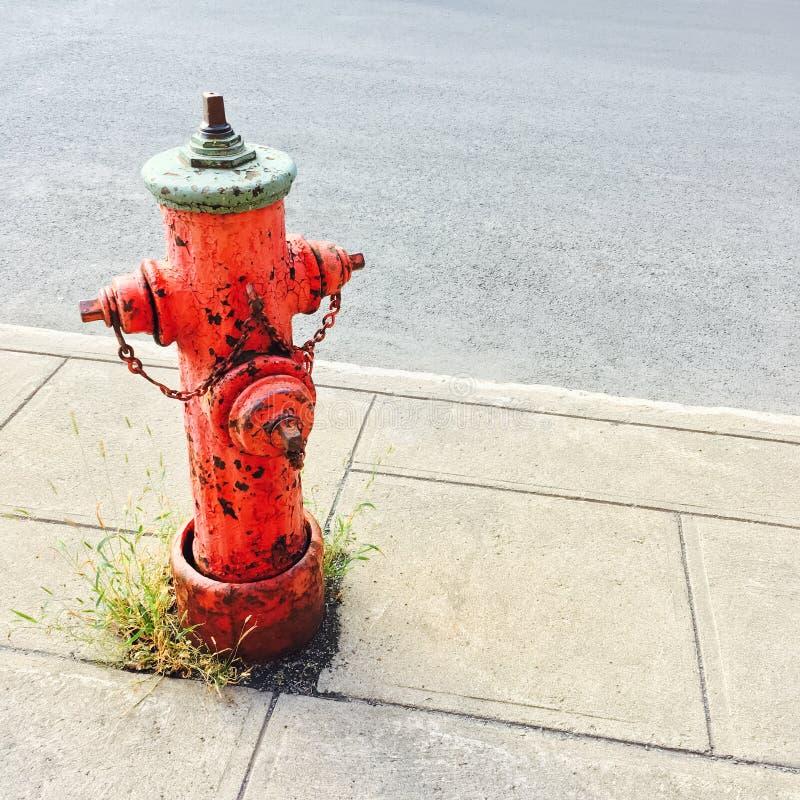 Roter Hydrant auf städtischer Straße stockfotografie