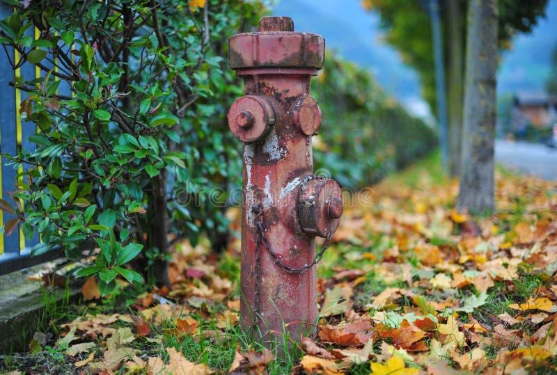Roter Hydrant in der Straße stockfotografie