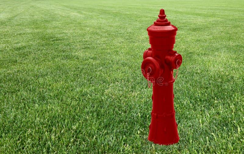 Roter Hydrant in einer grünen Wiese - Konzeptbild mit Kopienraum stockfotografie