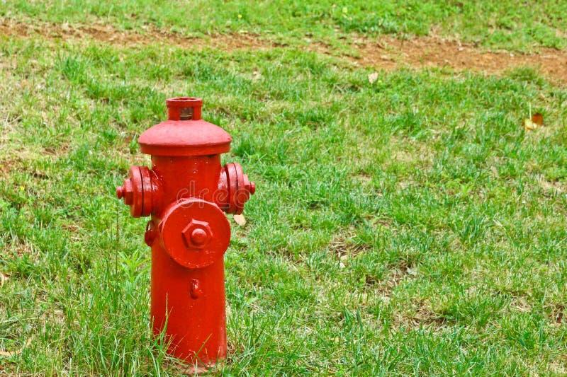 Roter Hydrant im Studentencampus stockfoto