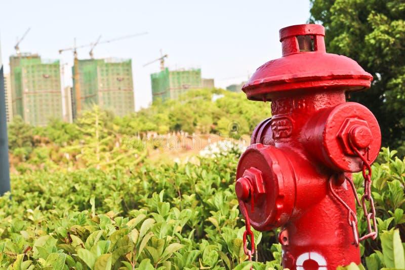 Roter Hydrant im Studentencampus stockfotos