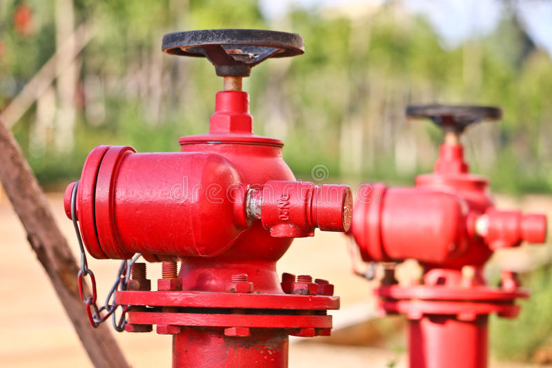 Roter Hydrant im Studentencampus lizenzfreies stockfoto