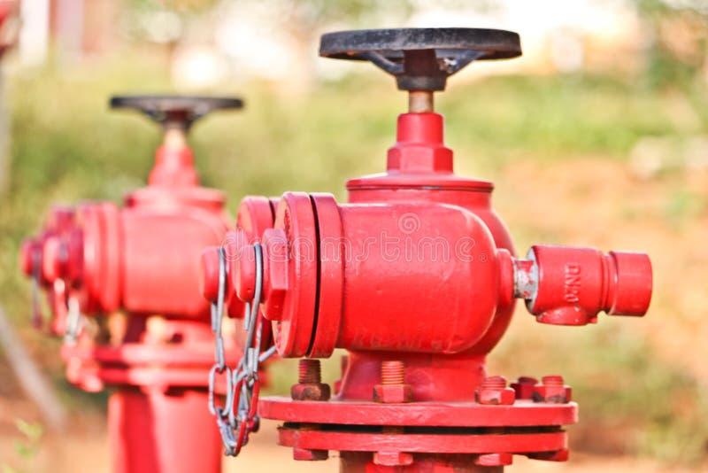 Roter Hydrant im Studentencampus stockfotografie