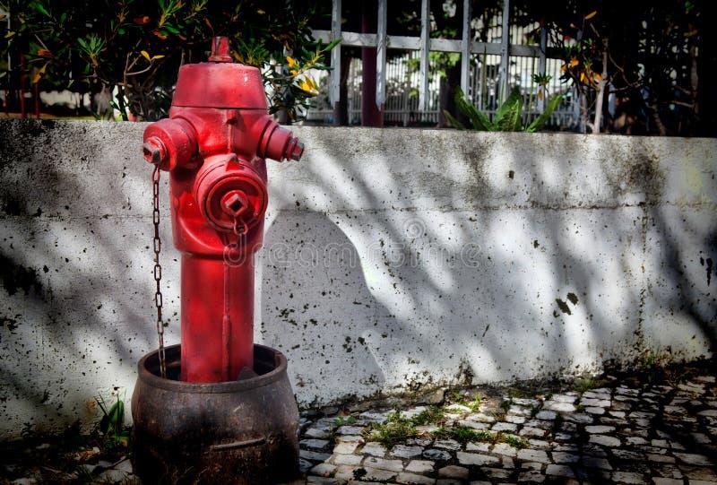 Roter Hydrant in Lissabon stockfotos