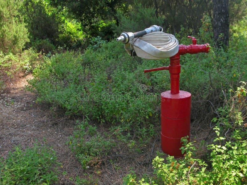 Roter Hydrant mit Feuerlöschschlauch stockfotos