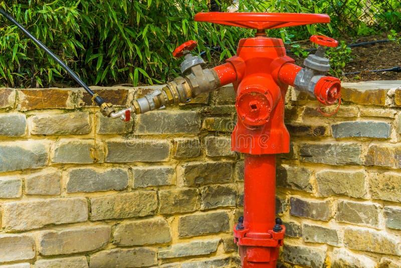 Roter Hydrant mit mehrfachen Schlauchinstallationen, Brandverhütungssystem, Sicherheit im Freien lizenzfreies stockfoto