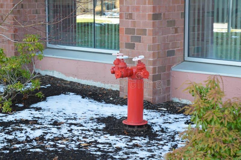 Roter Hydrant nahe Bürogebäude, Waltham, USA stockfoto
