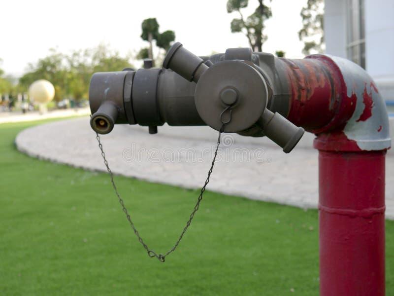Roter Hydrantzapfen der Nahaufnahme für die Verbindung des Feuerlöschschlauchs im Rasen lizenzfreies stockfoto