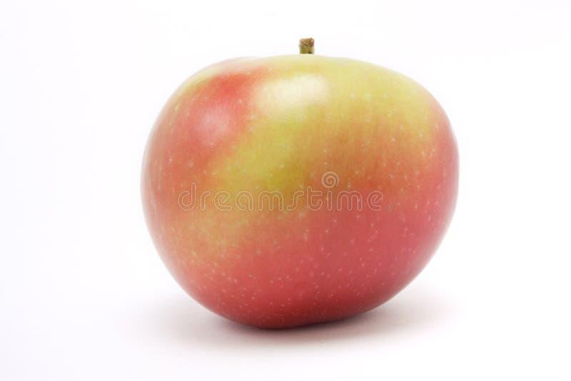 Roter Macintosh-Apfel stockfotografie