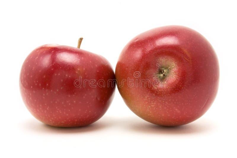 Roter Macintosh-Apfel stockbilder