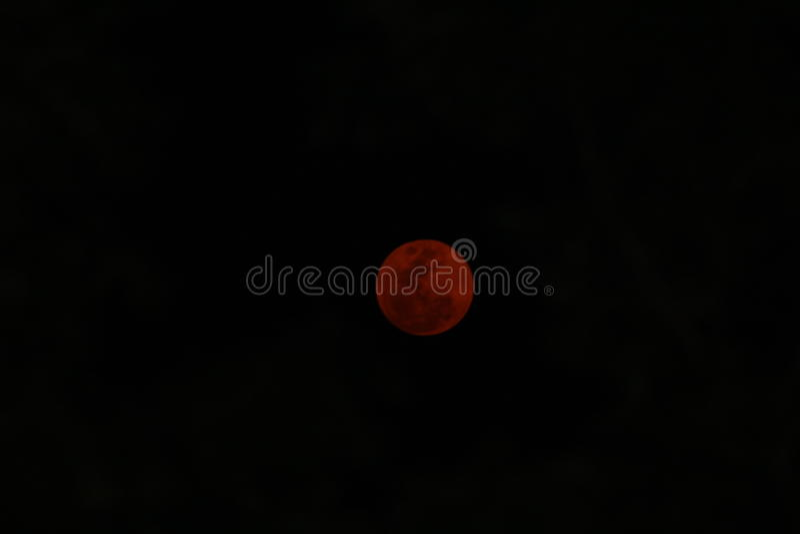 Roter Mond stockfotos