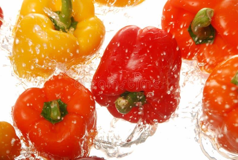 Roter orange yelllow grüner Pfeffer, der im Wasser spritzt stockfoto