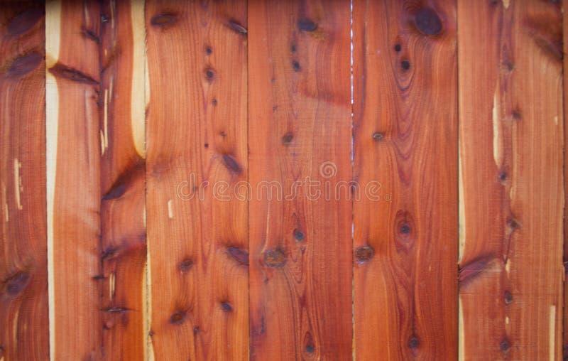 Roter OstCedar Fence lizenzfreie stockfotografie