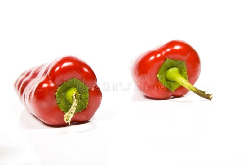 Roter Paprika stockfotos
