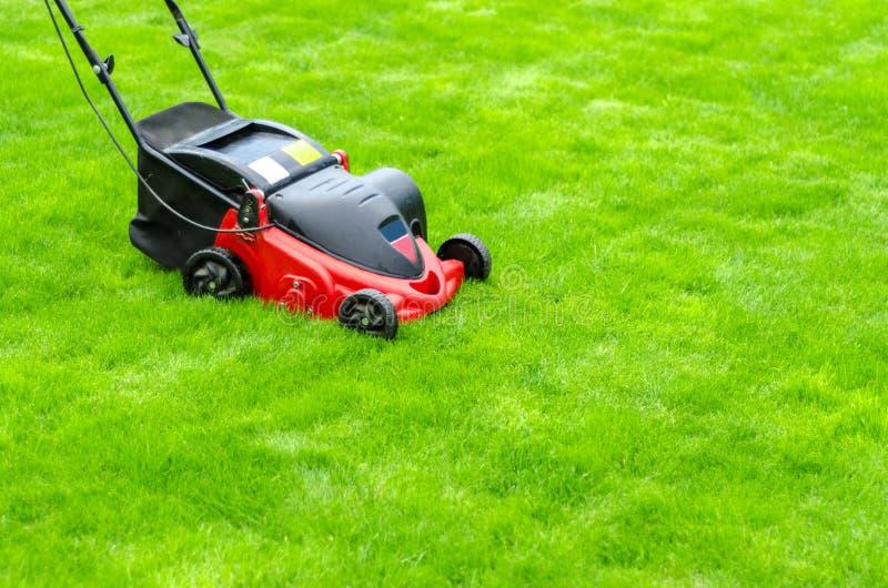 Roter Rasenm?her auf gr?nem Gras stockbild