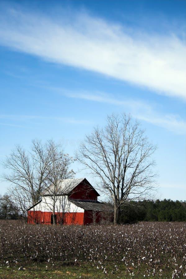 Roter Stall auf dem Baumwollgebiet stockfoto