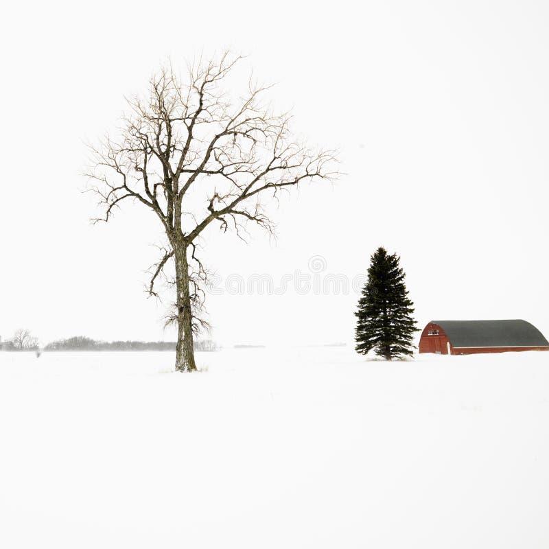 Roter Stall im Winter. stockfoto