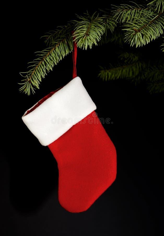 Roter Strumpf, der vom Weihnachtsbaum hängt stockbilder