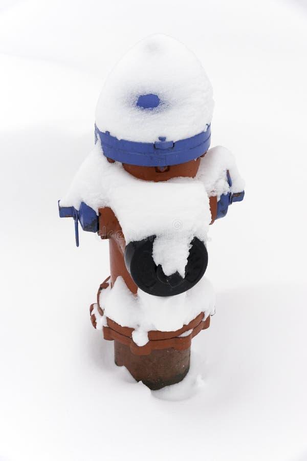Roter und blauer Hydrant bedeckt mit Schnee während eines Winter stor lizenzfreie stockbilder