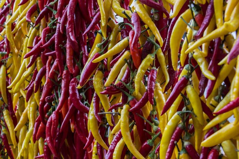 Roter und gelber Paprika stockfoto