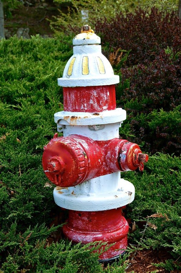 Roter und wei?er Feuer-Hydrant lizenzfreie stockfotografie