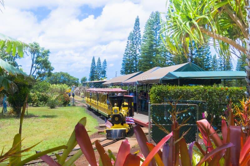 Roter Zug nehmen Touristen um die Dole-Ananasplantage in Oahu-Insel Hawaii lizenzfreies stockbild