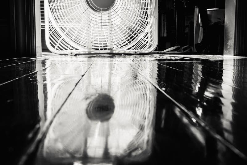 Roterande fan reflekterad i det Wood golvet royaltyfri fotografi
