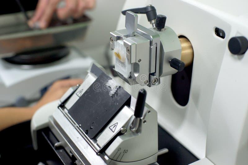 Roterande Microtomeavsnitt royaltyfria foton