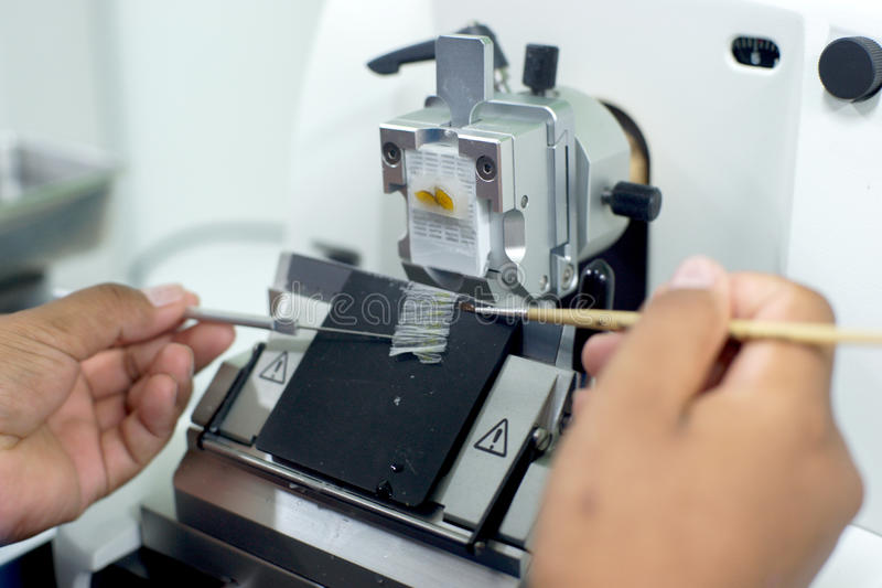 Roterande Microtomeavsnitt arkivbild