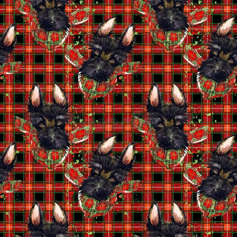 Rotes überprüftes Gewebemuster Hund des schottischen Terriers auf der nahtlosen Beschaffenheit des Kontrollplaids Aquarellweinste vektor abbildung