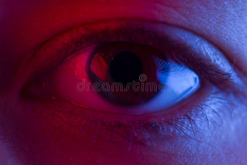 Rotes Blutauge lizenzfreies stockbild