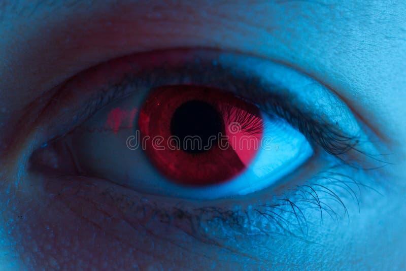 Rotes Blutauge lizenzfreie stockfotografie